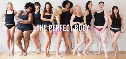 la diversité des morphologies corporelles