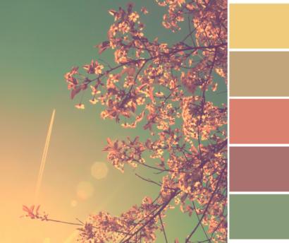 saison de couleurs